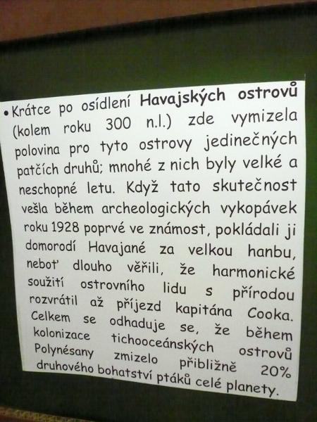 ekos22